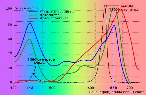 спектр поглощения хлорофила и излучения светодиодной лампы UNIEL LED-A60-9W для растений